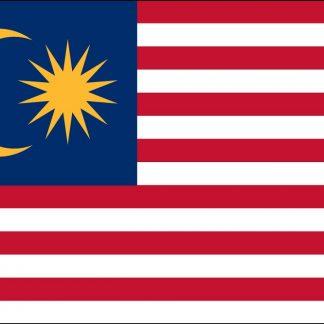 220472 US/Malaysia Double Lapel Pin-0