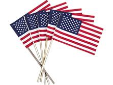 U.S. Stick Flags